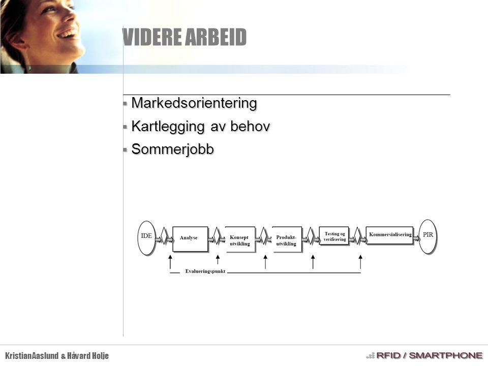 VIDERE ARBEID Kristian Aaslund & Håvard Holje  Markedsorientering  Kartlegging av behov  Sommerjobb
