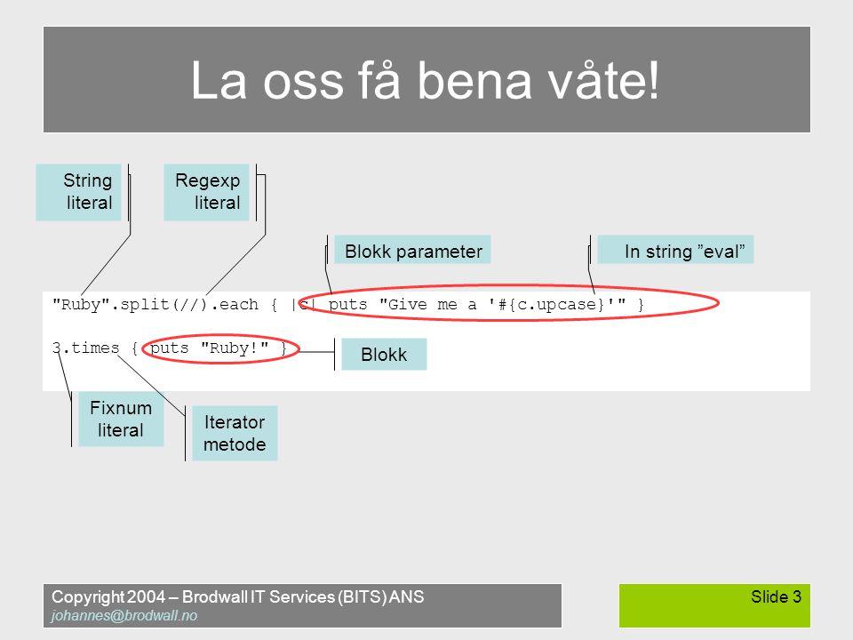 Copyright 2004 – Brodwall IT Services (BITS) ANS johannes@brodwall.no Slide 3 La oss få bena våte.