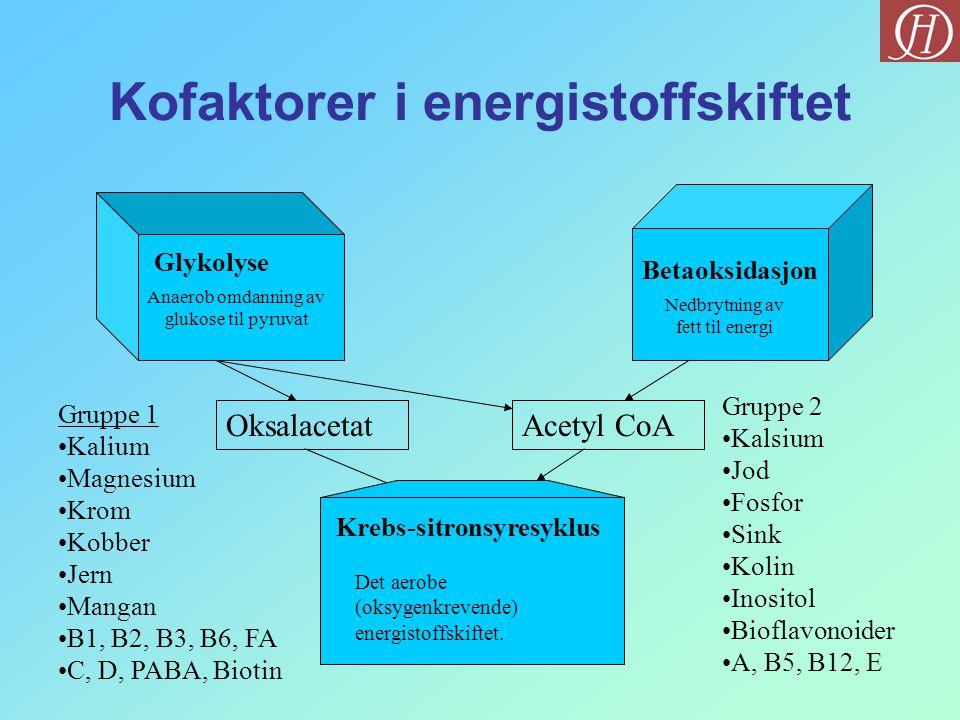 Kofaktorer i energistoffskiftet Glykolyse Betaoksidasjon OksalacetatAcetyl CoA Gruppe 1 •Kalium •Magnesium •Krom •Kobber •Jern •Mangan •B1, B2, B3, B6