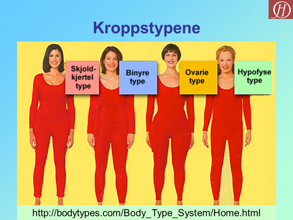 Kroppstypene http://bodytypes.com/Body_Type_System/Home.html