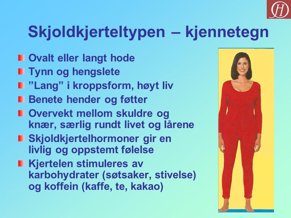 """Skjoldkjerteltypen – kjennetegn Ovalt eller langt hode Tynn og hengslete """"Lang"""" i kroppsform, høyt liv Benete hender og føtter Overvekt mellom skuldre"""