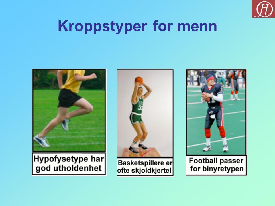 Kroppstyper for menn