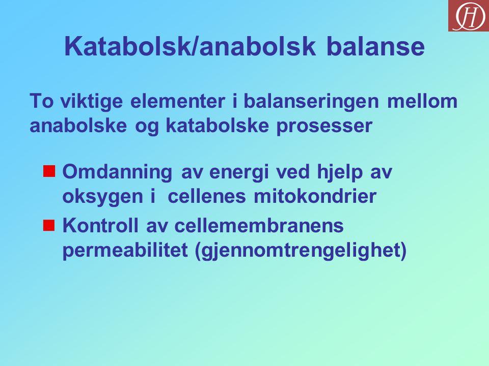 Katabolsk/anabolsk balanse To viktige elementer i balanseringen mellom anabolske og katabolske prosesser  Omdanning av energi ved hjelp av oksygen i