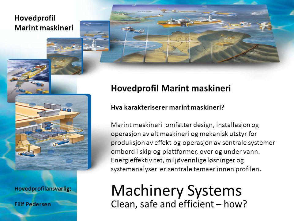 Hovedprofil Marint maskineri Hovedprofil Marint maskineri Hva karakteriserer marint maskineri? Marint maskineri omfatter design, installasjon og opera