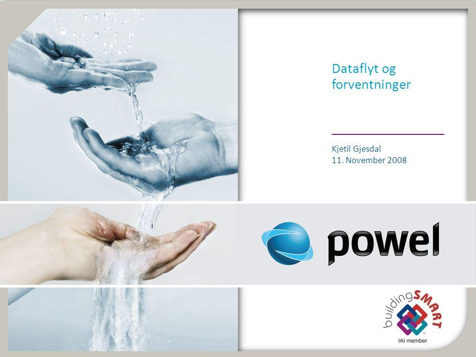 Dataflyt og forventninger Kjetil Gjesdal 11. November 2008