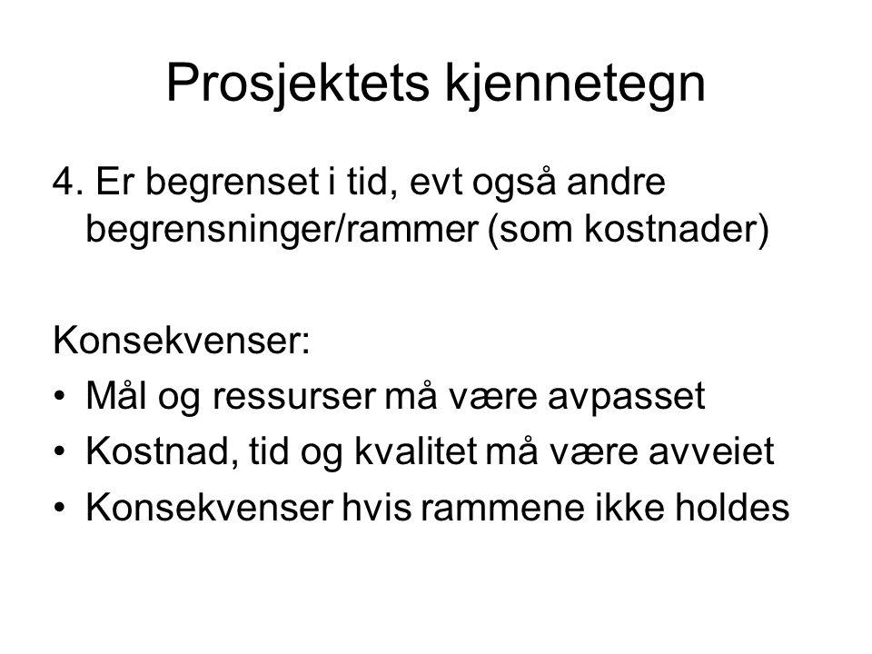 Prosjektets kjennetegn 4.