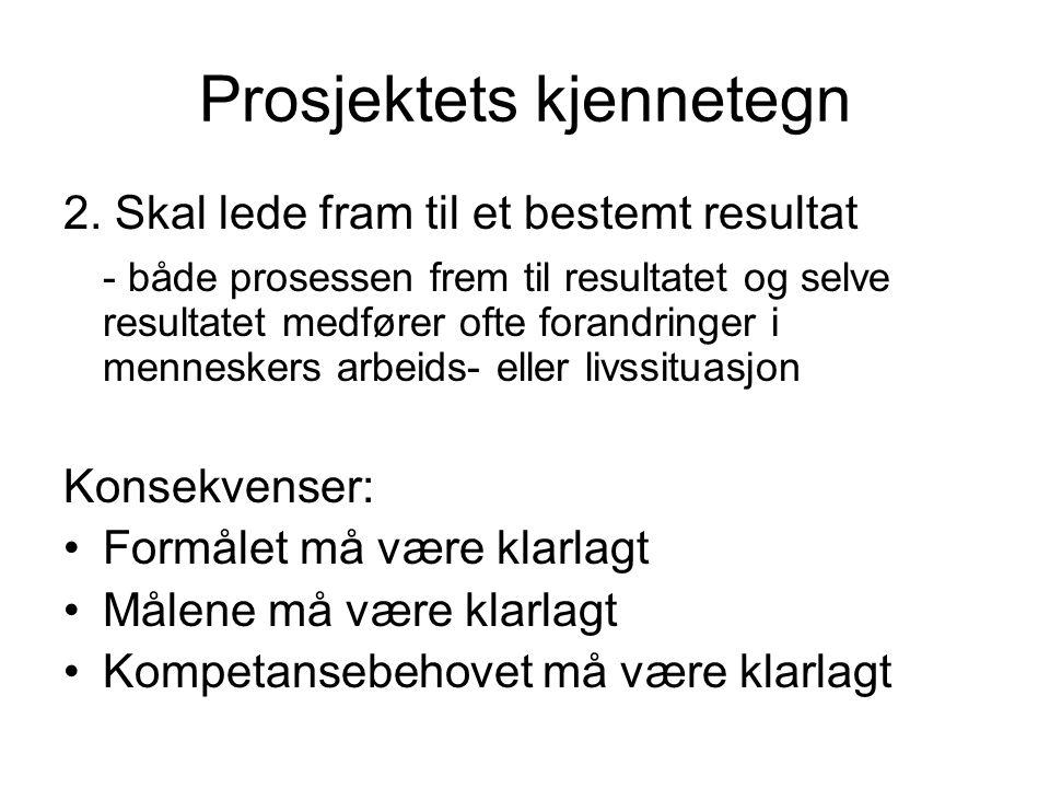Prosjektets kjennetegn 2.