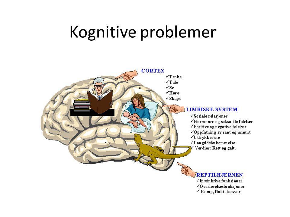 Kognitive problemer