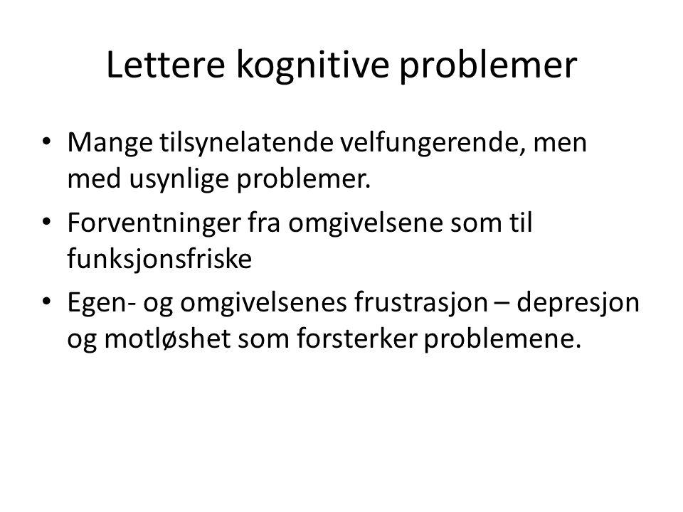 Lettere kognitive problemer • Mange tilsynelatende velfungerende, men med usynlige problemer. • Forventninger fra omgivelsene som til funksjonsfriske
