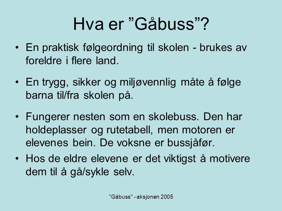 Gåbuss - aksjonen 2005 Hvorfor starte Gåbuss .
