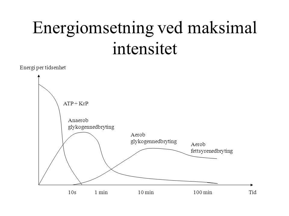 Energiomsetning ved maksimal intensitet Energi per tidsenhet 10sTid1 min10 min100 min ATP + KrP Anaerob glykogennedbryting Aerob glykogennedbryting Ae