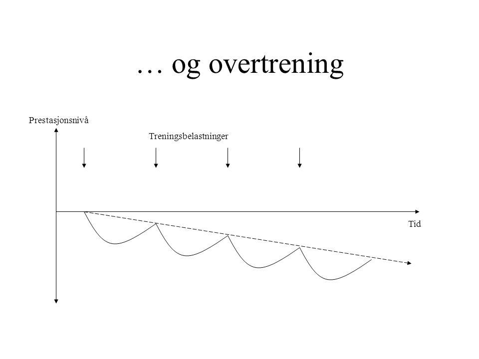 Hva tilhører orientering.