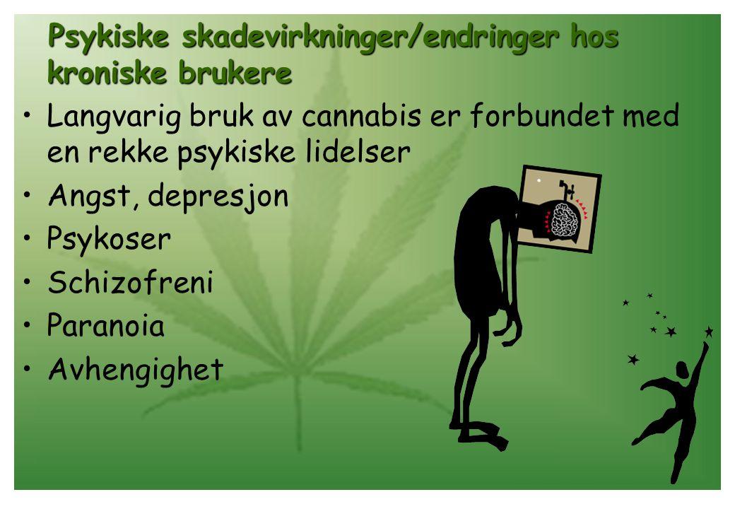 Psykiske skadevirkninger/endringer hos kroniske brukere •Langvarig bruk av cannabis er forbundet med en rekke psykiske lidelser •Angst, depresjon •Psy