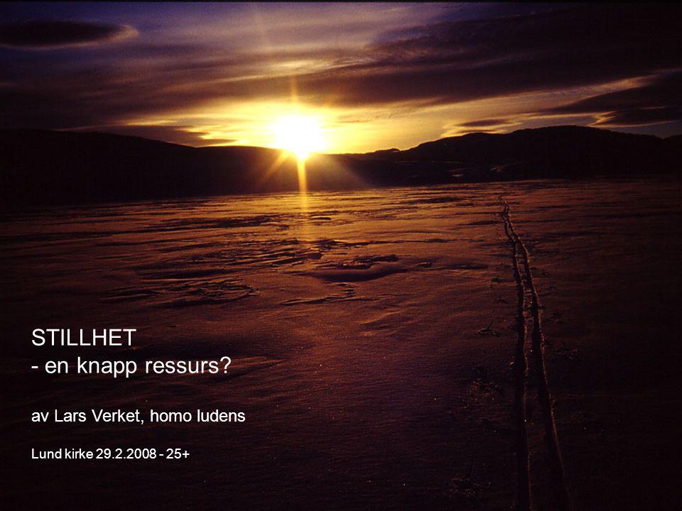 STILLHET - en knapp ressurs? av Lars Verket, homo ludens Lund kirke 29.2.2008 - 25+