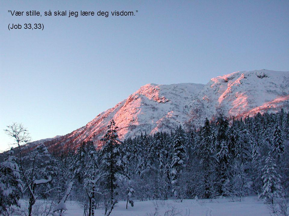 """""""Vær stille, så skal jeg lære deg visdom."""" (Job 33,33)"""