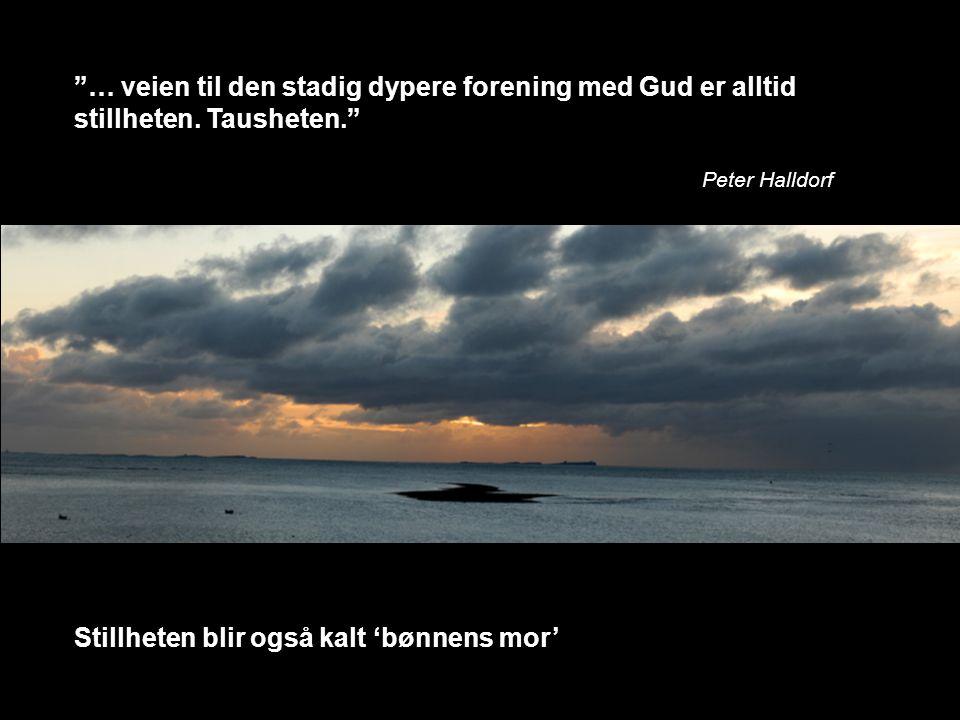 """""""… veien til den stadig dypere forening med Gud er alltid stillheten. Tausheten."""" Peter Halldorf Stillheten blir også kalt 'bønnens mor'"""
