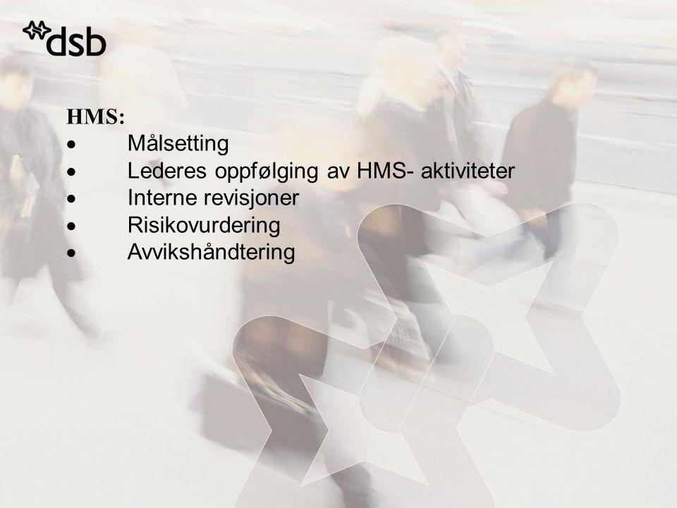 HMS:  Målsetting  Lederes oppfølging av HMS- aktiviteter  Interne revisjoner  Risikovurdering  Avvikshåndtering
