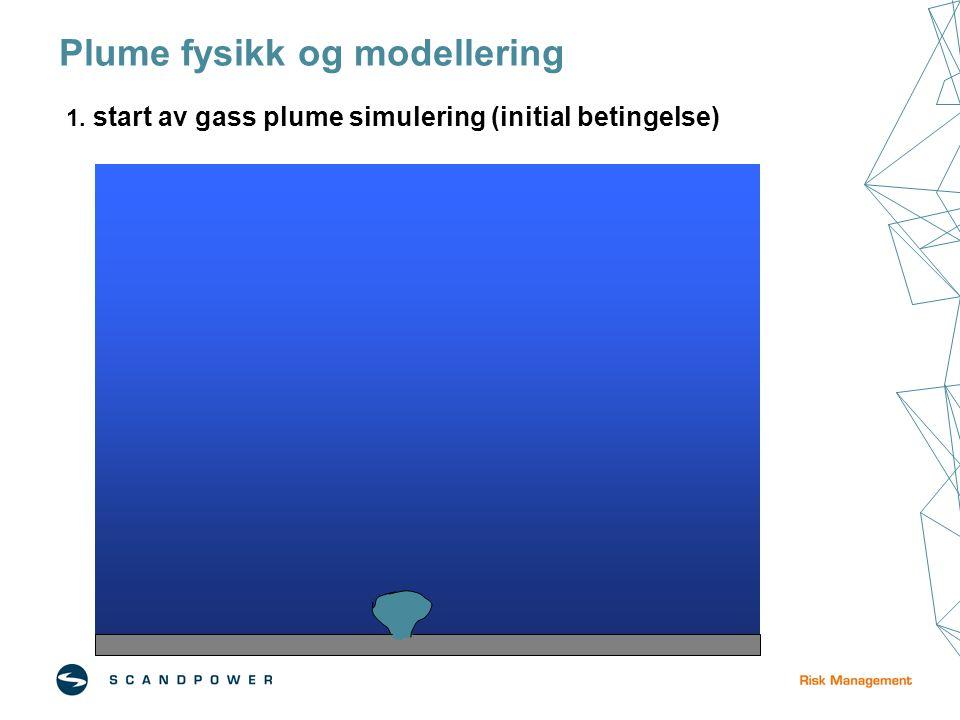 Plume fysikk og modellering 1. start av gass plume simulering (initial betingelse)