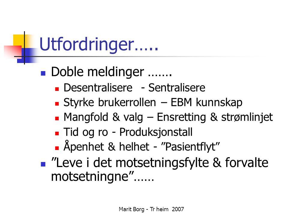 Marit Borg - Tr heim 2007 Utfordringer….
