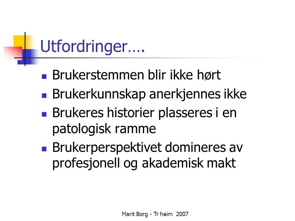 Marit Borg - Tr heim 2007 Å komme seg i det daglige….