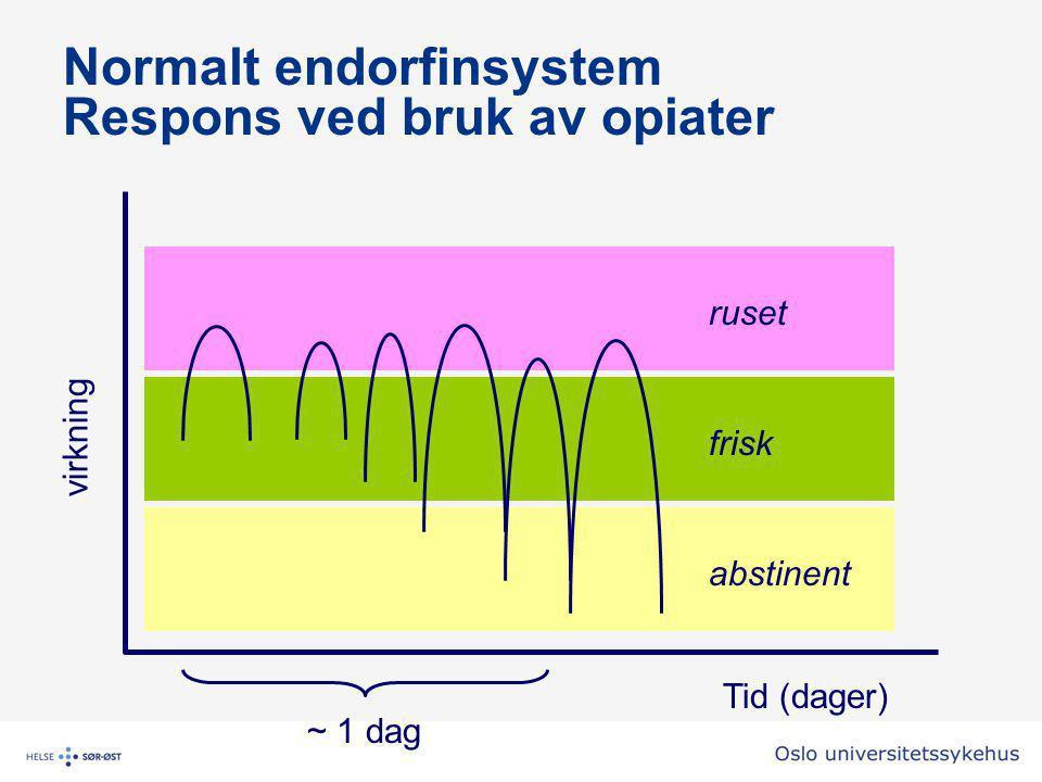Normalt endorfinsystem Respons ved bruk av opiater Tid (dager) ~ 1 dag abstinent frisk ruset virkning