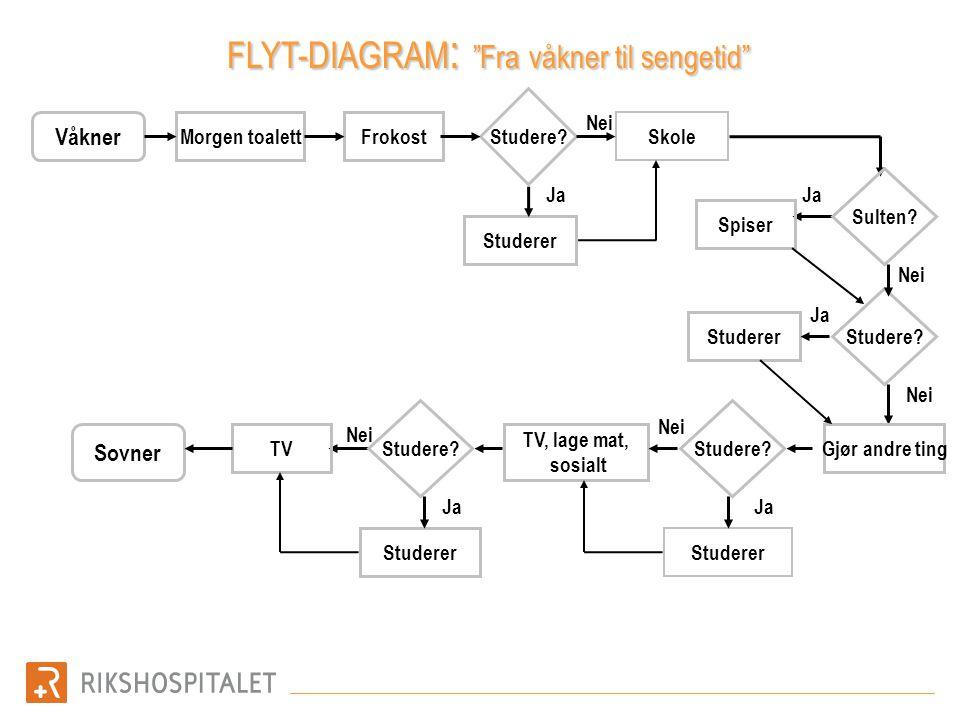 """Våkner Morgen toalett Studere? Frokost Skole Studerer Sovner Nei Ja Nei Ja FLYT-DIAGRAM : """"Fra våkner til sengetid"""" Studerer Studere? Ja TV, lage mat,"""