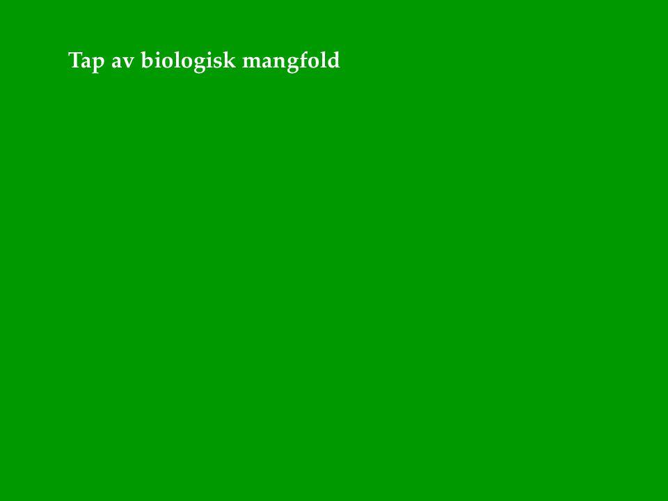 Tap av biologisk mangfold