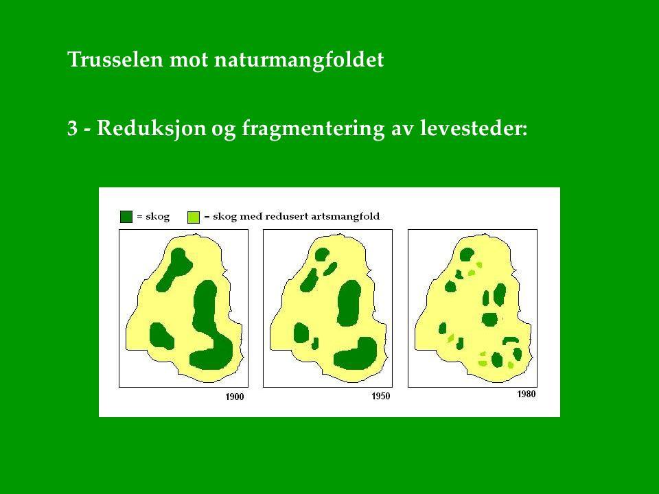 Trusselen mot naturmangfoldet 3 - Reduksjon og fragmentering av levesteder: