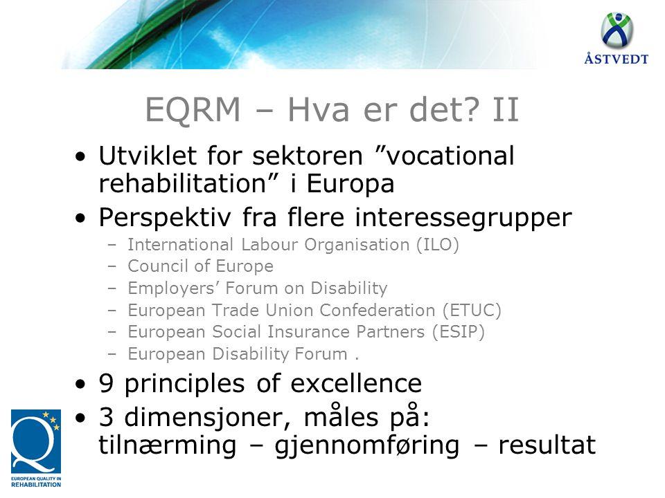 """EQRM – Hva er det? II •Utviklet for sektoren """"vocational rehabilitation"""" i Europa •Perspektiv fra flere interessegrupper –International Labour Organis"""