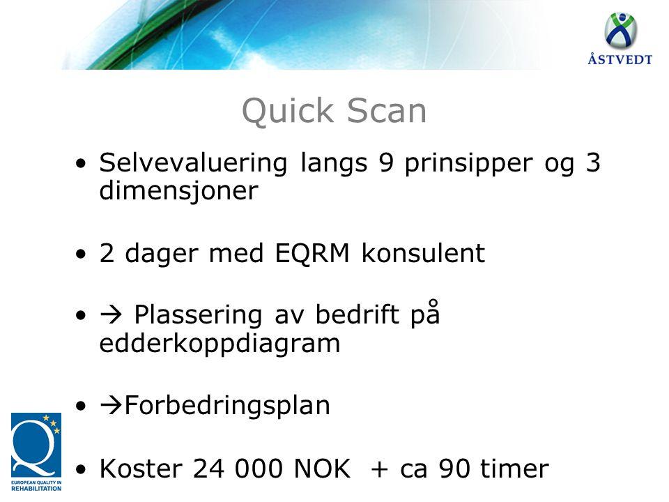 Quick Scan •Selvevaluering langs 9 prinsipper og 3 dimensjoner •2 dager med EQRM konsulent •  Plassering av bedrift på edderkoppdiagram •  Forbedrin