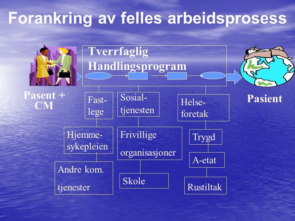 Pasent + CM Tverrfaglig Handlingsprogram Fast- lege Hjemme- sykepleien Helse- foretak Sosial- tjenesten Frivillige organisasjoner Skole Pasient Andre kom.
