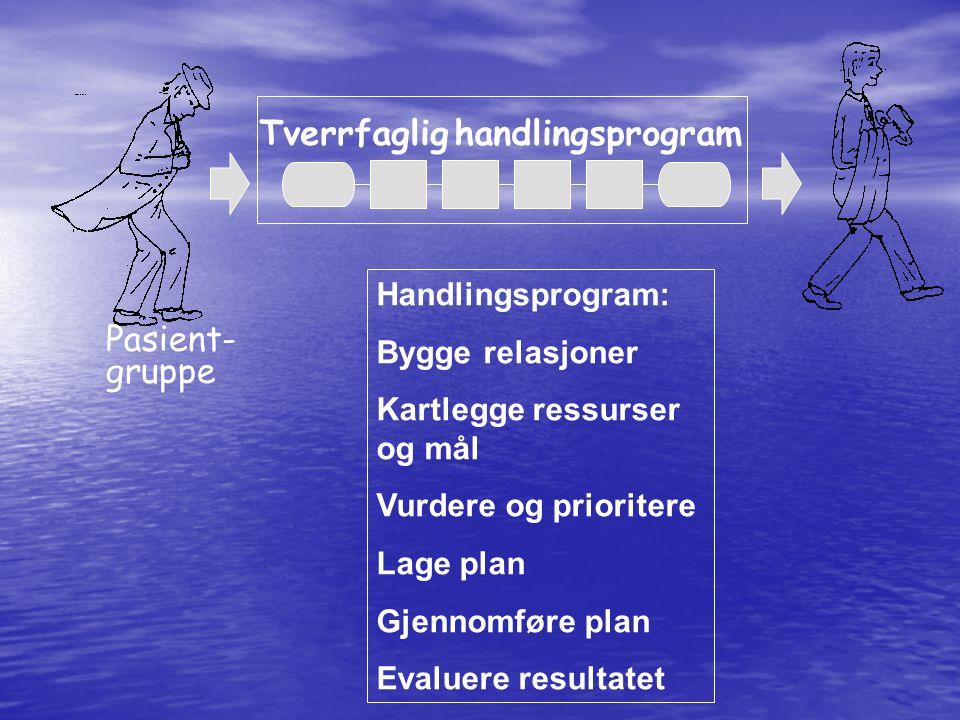 Pasient- gruppe Tverrfaglig handlingsprogram Handlingsprogram: Bygge relasjoner Kartlegge ressurser og mål Vurdere og prioritere Lage plan Gjennomføre plan Evaluere resultatet
