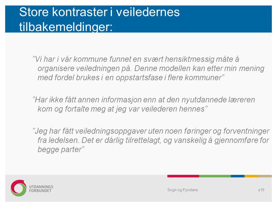 Store kontraster i veiledernes tilbakemeldinger: Vi har i vår kommune funnet en svært hensiktmessig måte å organisere veiledningen på.