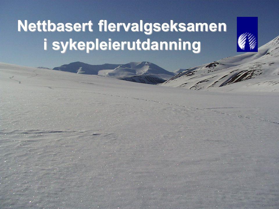 Lene Blekken, Trond Indergaard og Marit Olsen1 NVU konferanse, Bergen, 13.03.2007 Nettbasert flervalgseksamen i sykepleierutdanning