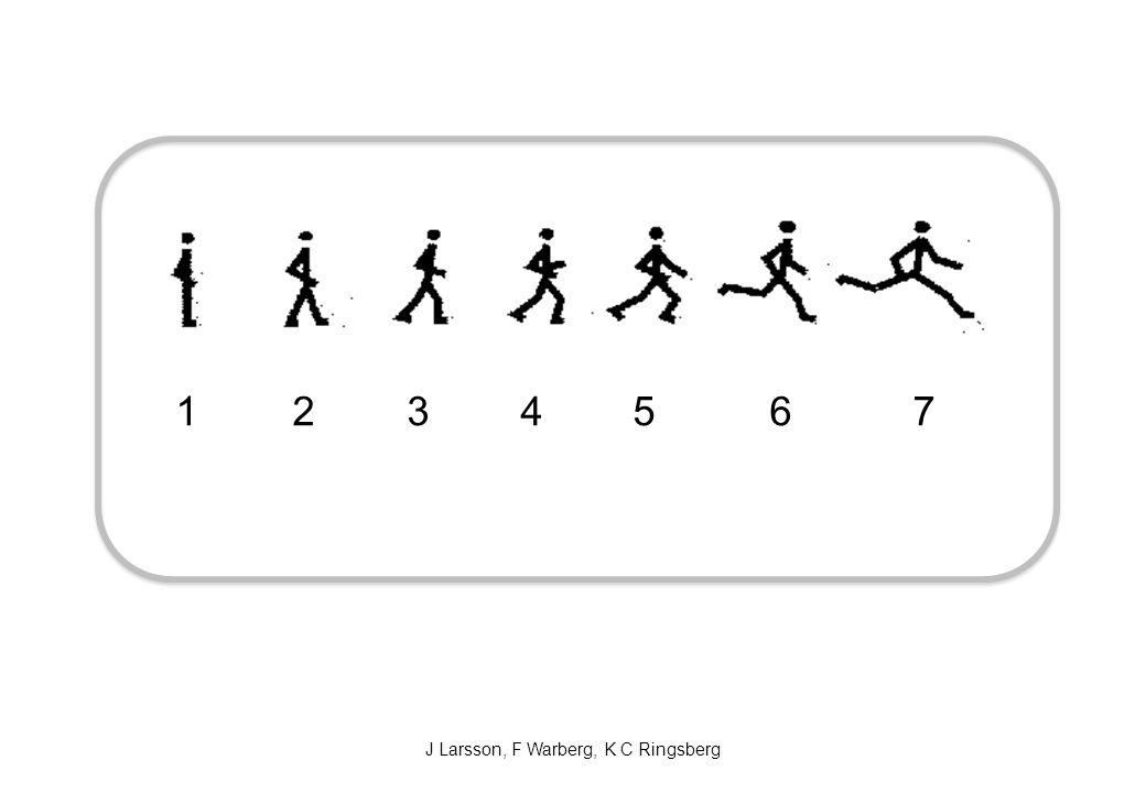 J Larsson, F Warberg, K C Ringsberg 1 2 3 4 5 6 7