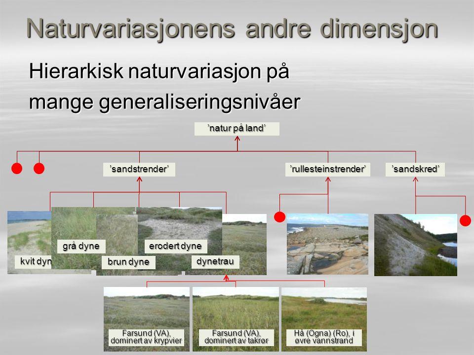 Hierarkisk naturvariasjon på mange generaliseringsnivåer Naturvariasjonens andre dimensjon 'sandstrender''rullesteinstrender''sandskred' 'natur på lan