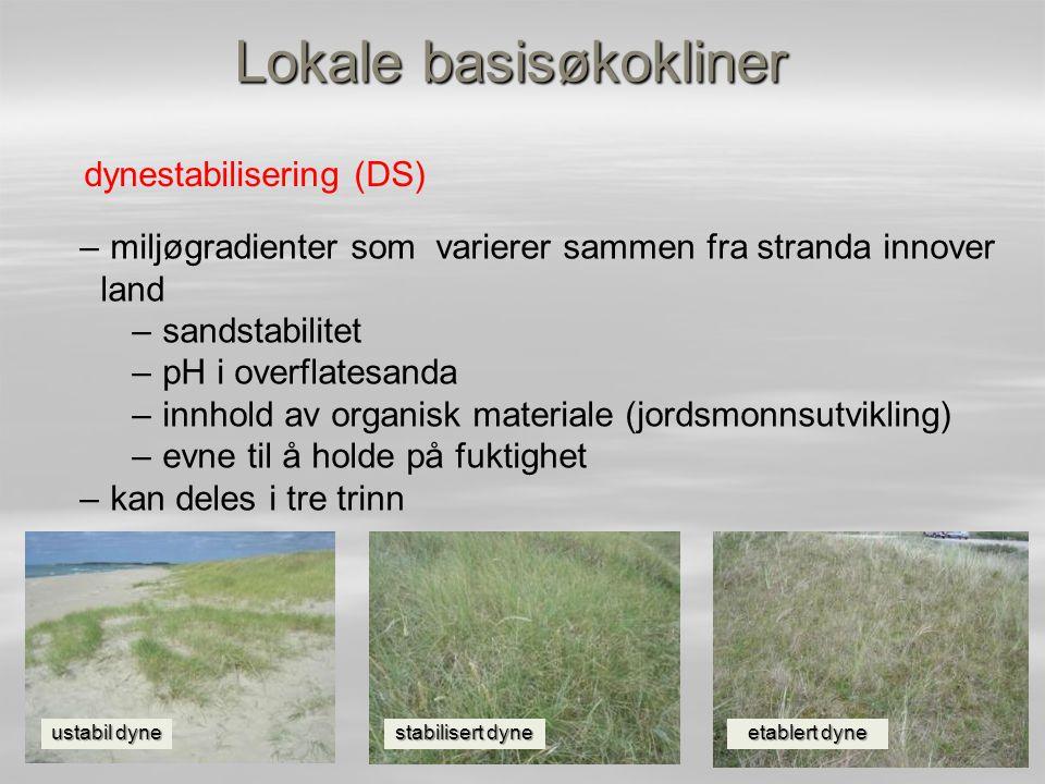 Lokale basisøkokliner dynestabilisering (DS) – miljøgradienter som varierer sammen fra stranda innover land – sandstabilitet – pH i overflatesanda – i