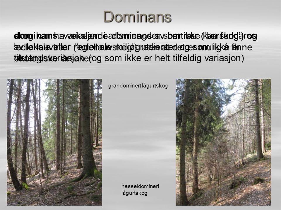 Dominans skog kan ha vekslende dominans av bartrær ('barskog') og 'edle lauvtrær ('edellauvskog') uten at det er mulig å finne økologiske årsaker gran