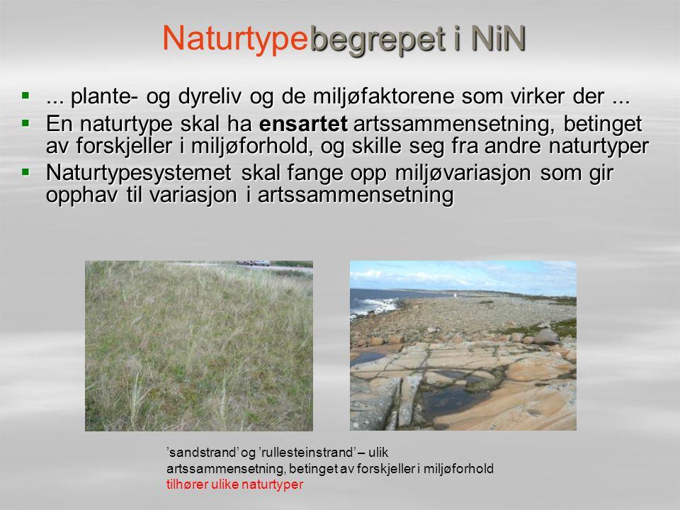 begrepet i NiN Naturtypebegrepet i NiN ... plante- og dyreliv og de miljøfaktorene som virker der...  En naturtype skal ha ensartet artssammensetnin