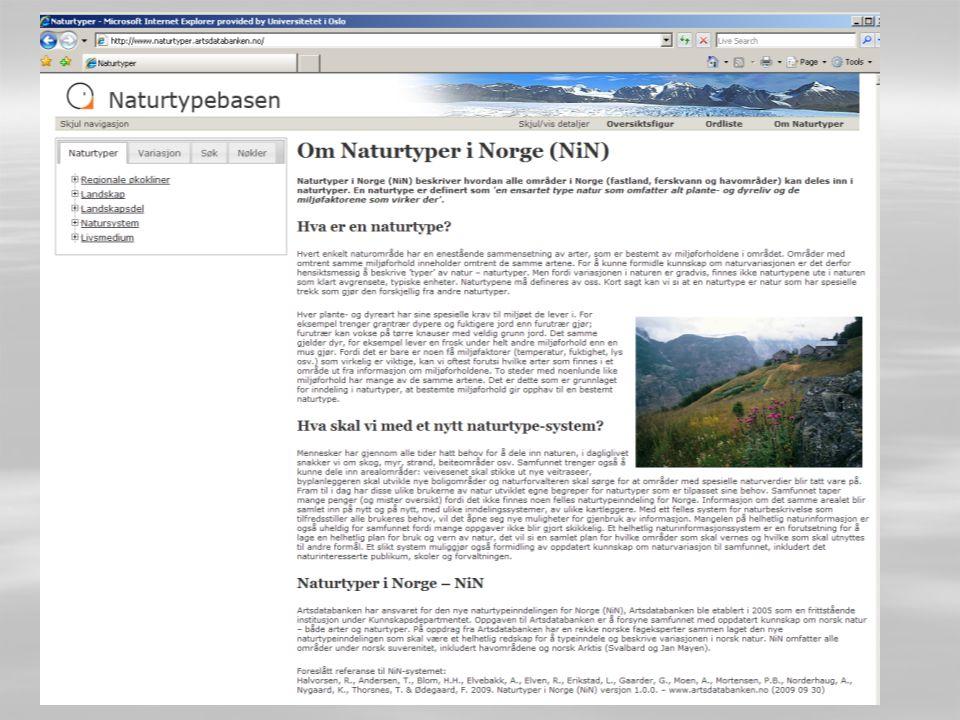 Tilgjengelighet  All NiN-dokumentasjonen er tilgjengelig på nettsiden www.naturtyper.artsdatabanken.no
