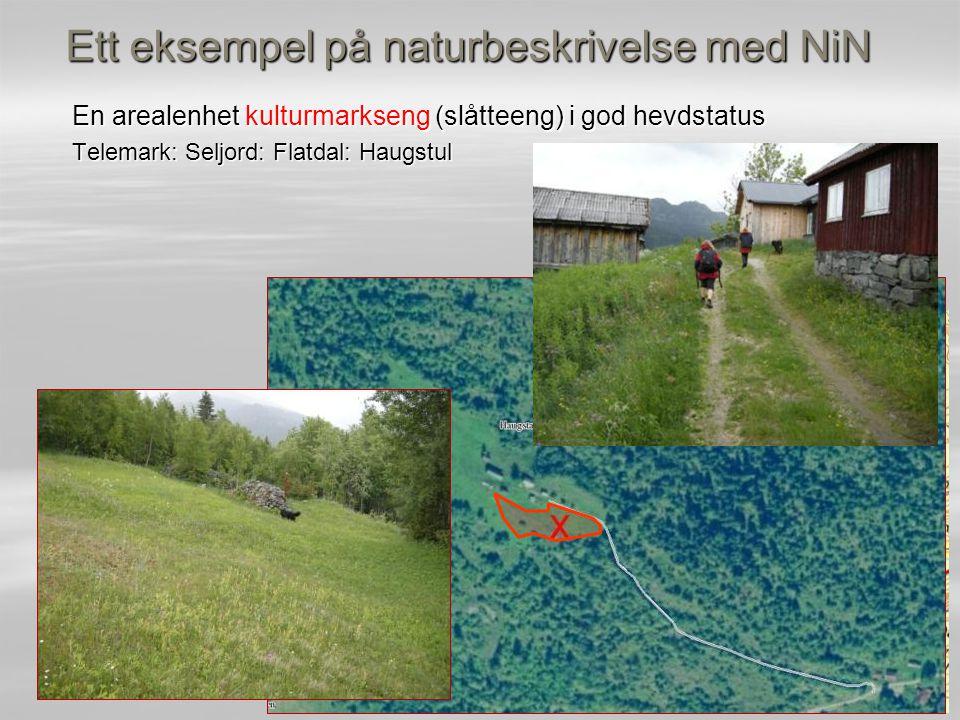 Ett eksempel på naturbeskrivelse med NiN En arealenhet kulturmarkseng (slåtteeng) i god hevdstatus Telemark: Seljord: Flatdal: Haugstul