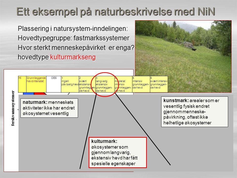Ett eksempel på naturbeskrivelse med NiN Plassering i natursystem-inndelingen: Hovedtypegruppe: fastmarkssystemer Hvor sterkt menneskepåvirket er enga