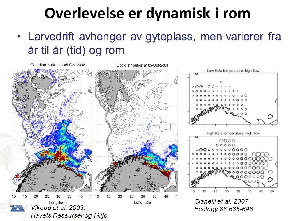 Overlevelse er dynamisk i rom Vikebø et al. 2009. Havets Ressurser og Miljø •Larvedrift avhenger av gyteplass, men varierer fra år til år (tid) og rom