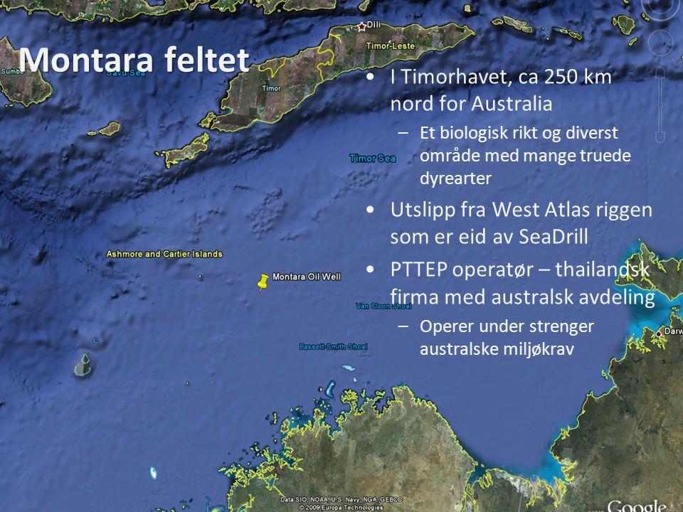 Montara feltet •I Timorhavet, ca 250 km nord for Australia –Et biologisk rikt og diverst område med mange truede dyrearter •Utslipp fra West Atlas rig