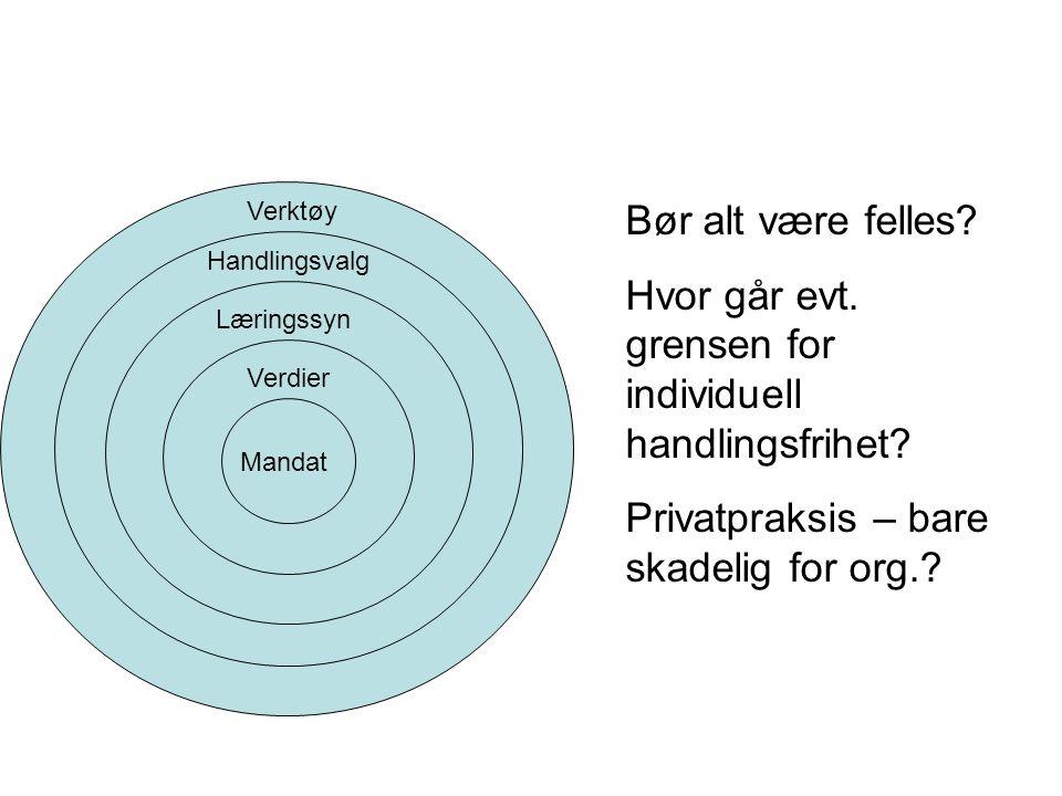 Mandat Verdier Læringssyn Handlingsvalg Verktøy Bør alt være felles.
