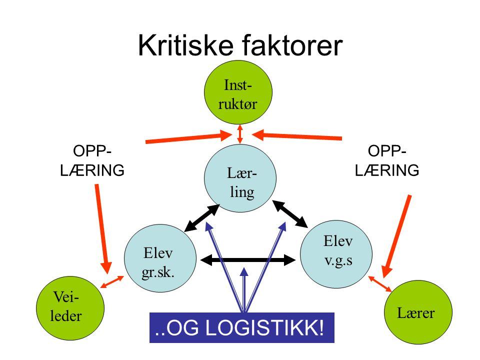 Kritiske faktorer Vei- leder Lærer Inst- ruktør Lær- ling Elev v.g.s Elev gr.sk.