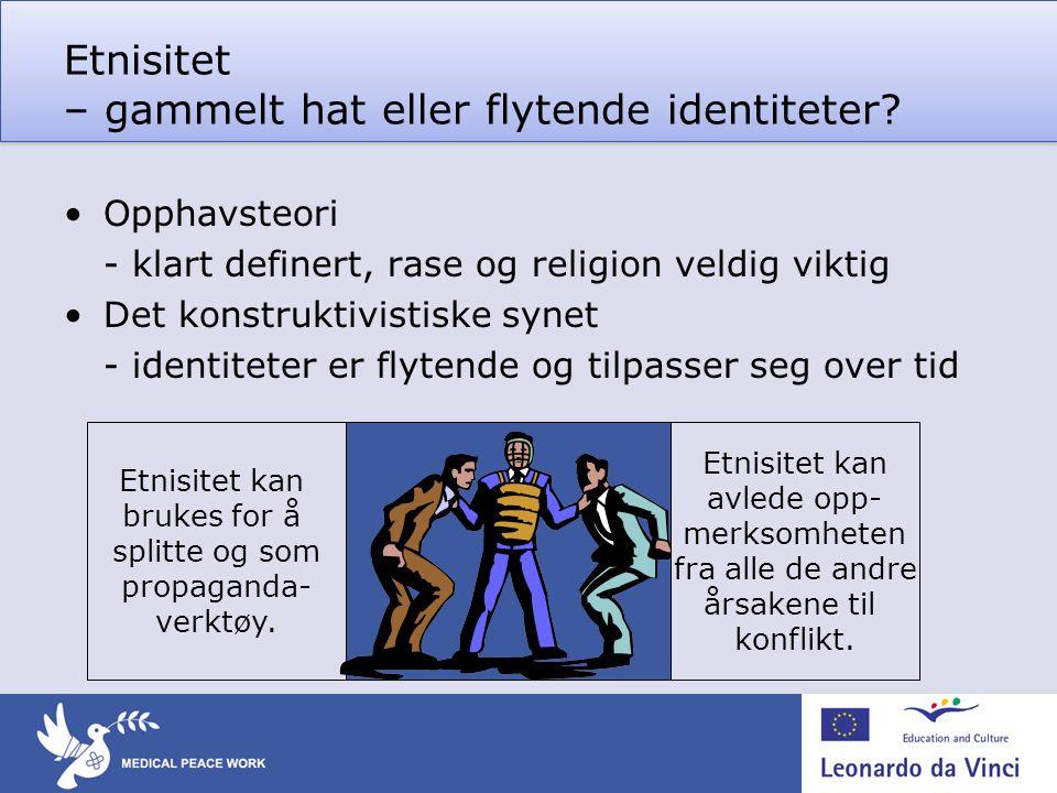 Etnisitet – gammelt hat eller flytende identiteter.