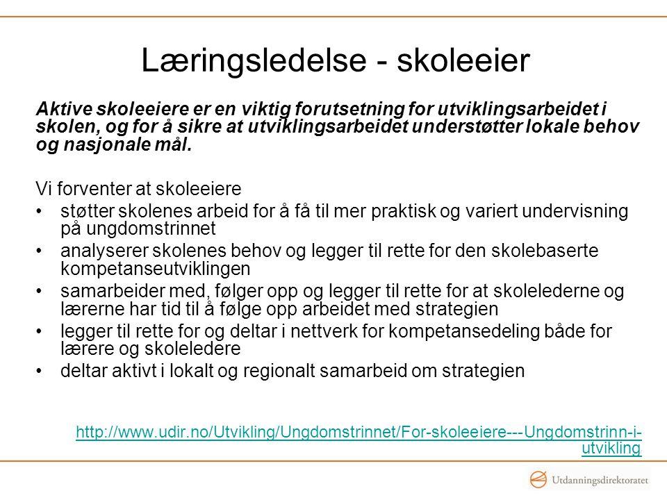 Oppgave i kommunegrupper (skoleeier og skoleleder): Konkretiser hvordan hver av de fem forventningene til skoleeier skal omsettes i praktiske handlinger i den enkelte kommune.