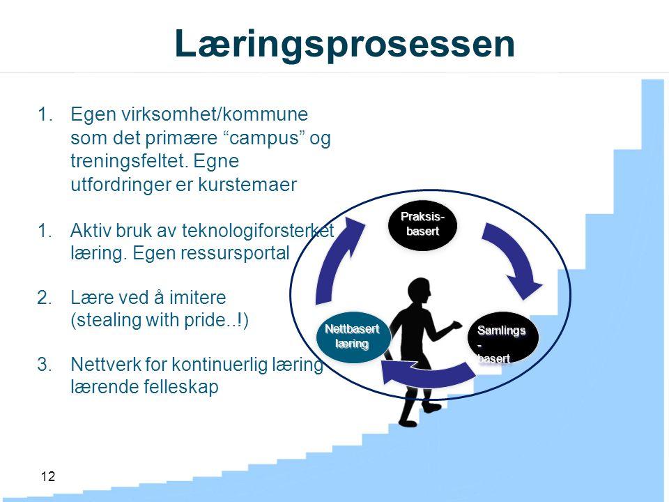 12 Læringsprosessen Praksis-basert Samlings - basert basert Nettbasertlæring 1.Egen virksomhet/kommune som det primære campus og treningsfeltet.