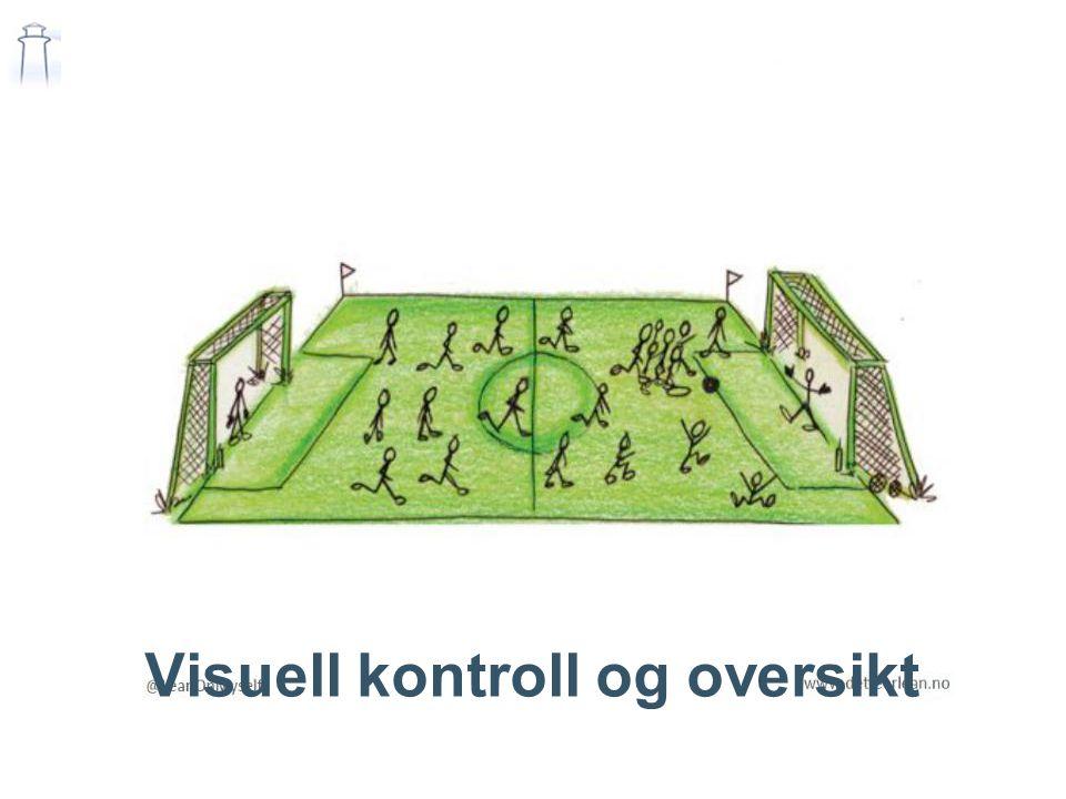 Visuell kontroll og oversikt